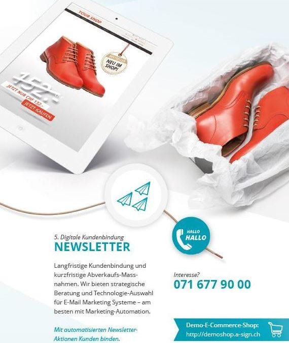 2014-2015 Verkaufsleiter Digital Marketing Agentur für E-COMMERCE @ A-SIGN GmbH